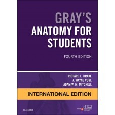 Gray's Anatomy for Students International Edition 4th Edition 2019 By Richard Drake A Wayne Vogl